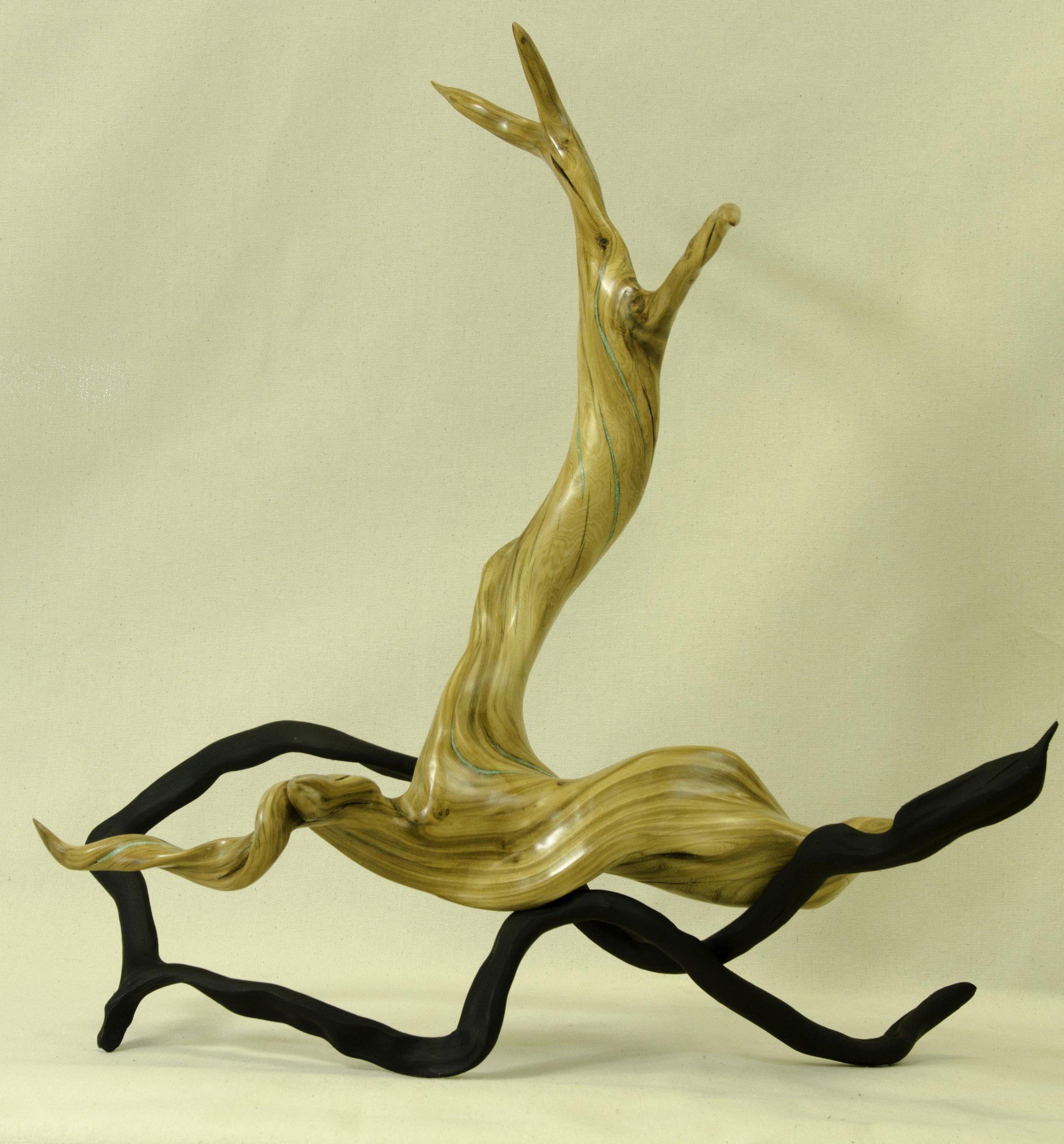 Oregon Juniper by Tuttie Peetz