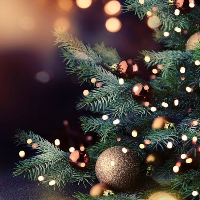 Merry Christmas to all our wonderful customers! We are having a much deserved break starting now, and will be back in action on Wednesday the 9th January.  We hope you have a fantastic and safe break too! Xx