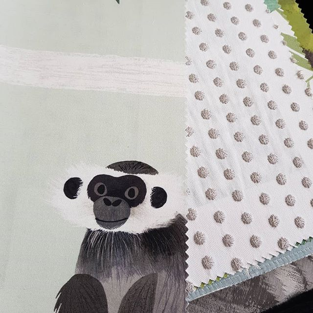 Oh hello cheeky monkey!  Still in love with this gorgeous children's collection! All fabrics are suitable for curtains, pelmets and cushions. There is a fabric for everyone, regardless of age.  #elegantconcepts #bendigo #centralvictoria #fabric #curtains #drapes #cushions #pelmets #children #childrensdecor #kidsdecor #kidsstyling #kidsbedroom #bedroomdecor #decor #decorating #kidsinteriors #spots #dots #monkey #cheekymonkey #grey #green #white #styling #style #interiors #interiordecorating #lovewhatwedo #supportlocal