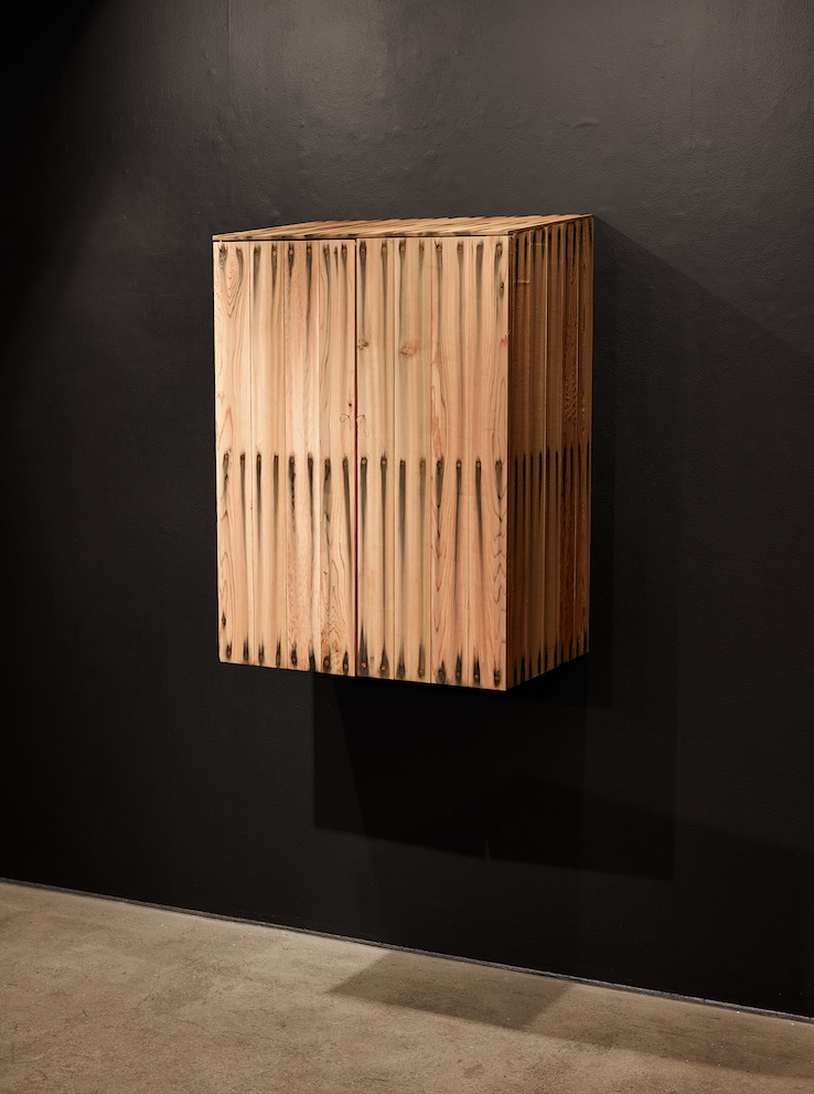 Large Bleed Wall Cabinet, 2014