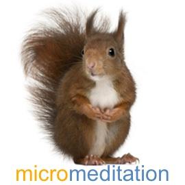 SeaChange-Resources-micromeditation-wp.jpg
