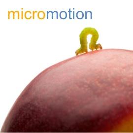 SeaChange-Resources-micromotion-wp.jpg