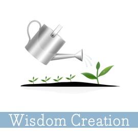 SeaChange-Resources-Wisdom-Creation.jpg