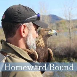 SeaChange-Resources-Homeward-Bound-web.jpg