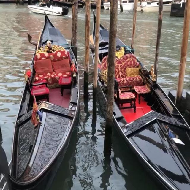 Gondolas are one of the most iconic symbols of Venice. The entire world knows the silhouette of these elegant Venetian boats plying on the water of the canals of Venice, rowed by the renown gondoliers.  Venice is super famous in the whole world and evocative as the Venice Gondola.  Who wants a ride?  Sending much love from Venice ❤️