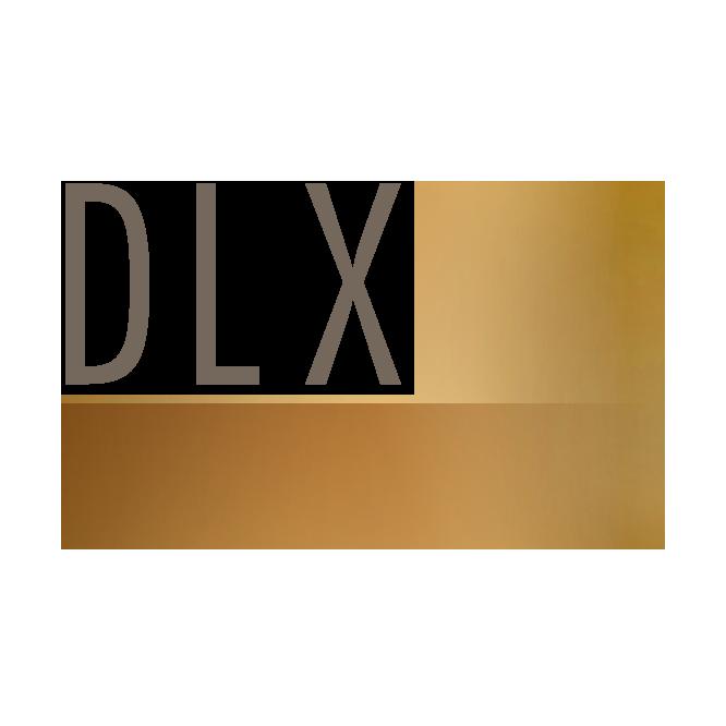 DLXco logo (light w grey lettering).png