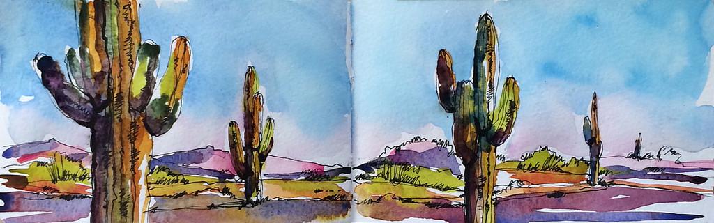 11. Cacti.jpg
