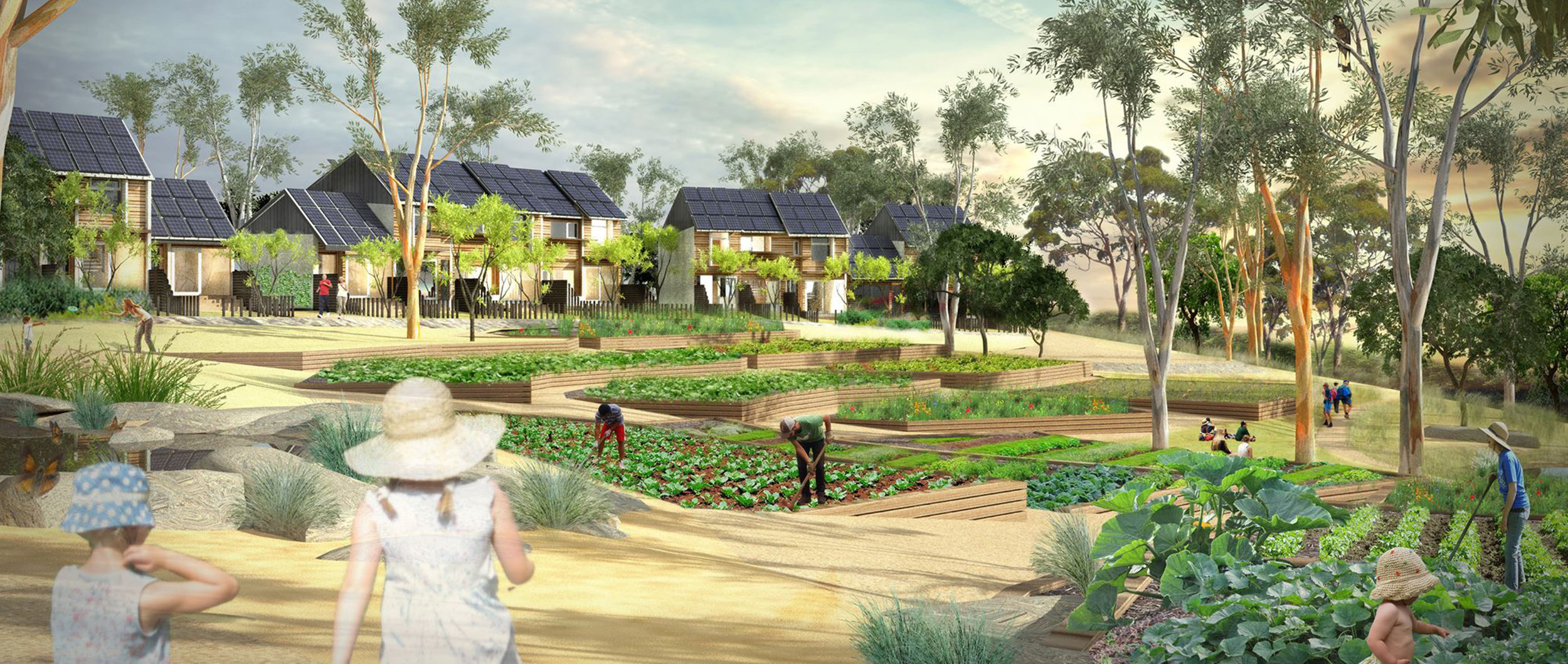 The Paddock Eco Village. A new standard for sustainable living.