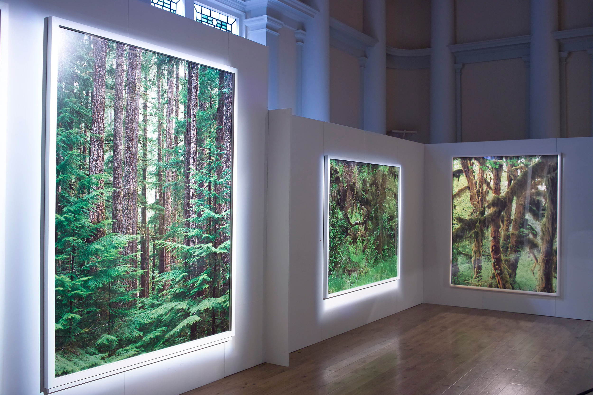 Installation View, Ithaka, 2008, Shoreditch Town Hall, London