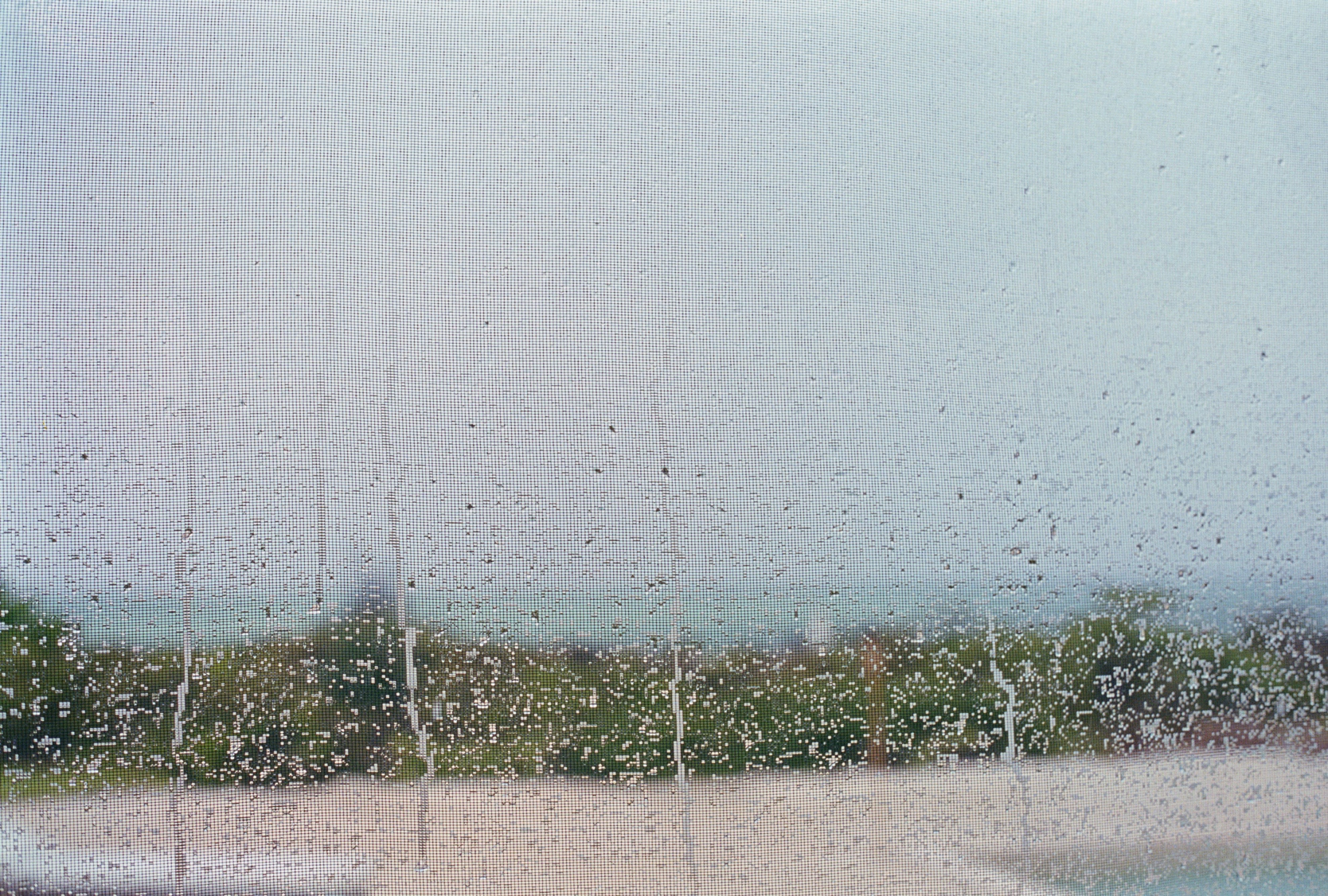 Untitled (Screen I), 2001 /  archival pigment   print, 27  x 40   inches  ,  edition of 5 plus 2 AP
