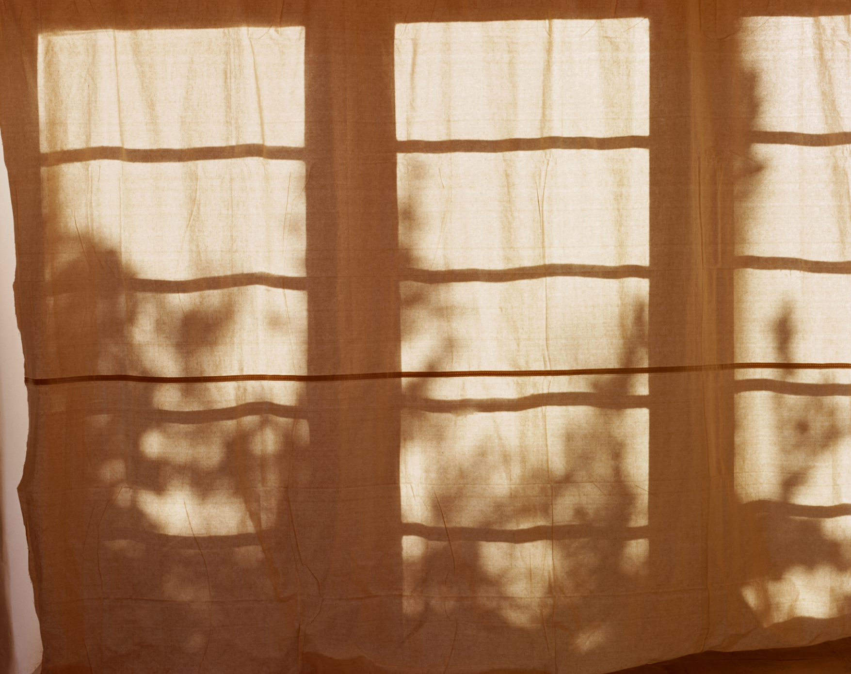 Untitled (Curtain I), 2003   /archival pigment   print, 22.5  x 30   inches  ,  edition of 5 plus 2 AP