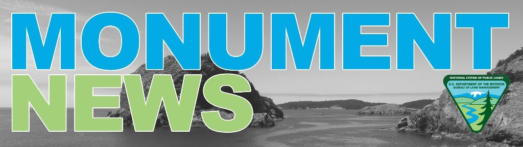 "While Election season is consuming much of our attention, important decisions are being made at home. We have a chance to be involved in an important Land Use process in the next two months.  The Bureau of Land Management has released the Draft Resource Management Plan/EIS for the San Juan Islands National Monument. The public is invited to submit comments on the plan. Below you will find a recent newsletter, with links to a website with information about SJINM, as well as a link to the plan, and to comment forms.   Public Meetings Schedule:    Nov 7 - 6:00-8:00 PM, Orcas Island Library, 500 Rose St, Eastsound, Orcas Island   Marcia deChadenedes, Monument Manager, will also be available at the times and locations below to answer questions throughout the comment period.  She will have copies of the Draft RMP/EIS, the Instruction Manual, Planning Primer and Guidebook, and comment forms.   Orcas Island Public Library, 500 Rose St, Eastsound   October 17 - 1:00 to 3:00   November 28 - 1:00 to 3:00   December 28 - 1:00 to 3:00   Janet Alderton has provided some comments, especially encouraging the prohibition of chemical controls of vegetation, and banning of the use of firearms on SJINM land. This is posted on Action Network: https://actionnetwork.org/user_files/user_files/000/027/307/original/Janet's_SJIslands_Monument_Comments.docx    BLM Releases Draft Plan for San Juan Islands National Monument!   Today the Bureau of Land Management announced the release of the Draft Resource Management Plan (RMP)/Environmental Impact Statement (EIS) for the San Juan Islands National Monument (Monument).  This Draft RMP/EIS is available to review at  https://go.usa.gov/xRphc  and addresses a range of alternatives for the purposes of providing overarching goals and objectives for the management of the Monument to include the protection and restoration of historic and cultural resources, providing for recreation opportunities, and coordinating the management of these lands with local tribes and governmental organizations.   ""It's important to realize this plan will only apply to the 1,021 acres of public lands that make up the Monument,"" said BLM Spokane District Manager Linda Clark. ""While a relatively small area, the Monument includes landscapes of great beauty as well as sensitive cultural and ecological resources that should be protected for future generations to enjoy.""  The Draft RMP/EIS presents a full spectrum of different management alternatives, and analyzes the environmental effects of the alternatives. Based on this analysis and comments the agency receives on the Draft RMP/EIS, the BLM will prepare a Proposed RMP/Final EIS with the assistance of cooperating agencies.  Following publication of this Draft RMP/EIS, members of the public will have 90 days to provide written comments. The BLM encourages all interested members of the public to submit comments and participate in the upcoming open houses and workshops (schedules are below).  ""The BLM prepared this document in coordination with cooperating agencies and consulting tribes and with input from the Monument Advisory Committee and the public,"" said Monument Manager Marcia deChadenèdes. ""This next step with the public is critical to ensure we heard everyone and that we haven't missed anyone. I hope we'll get plenty of constructive feedback and I hope to see everyone at the public meetings.""  The public is encouraged to submit comments through the internet, email, or postal mail: Website:  https://go.usa.gov/xRphc  Email:  blm_or_sanjuanislandsnm@blm.gov  Postal: San Juan Islands National Monument BLM Lopez Island Office PO Box 3 Lopez, WA 98261"