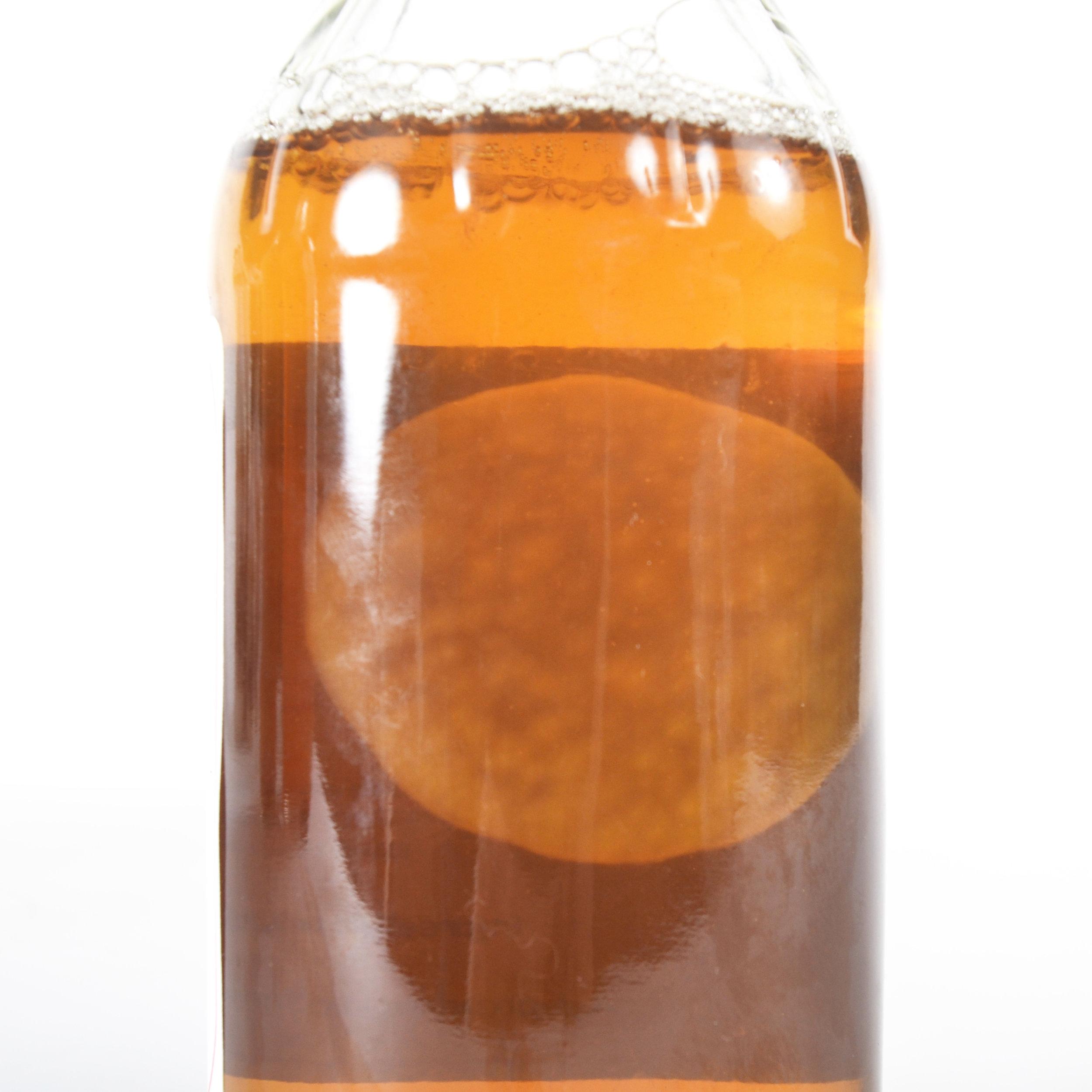 Apple Cider Vinegar Mother