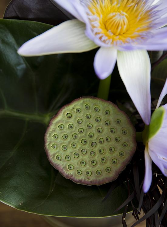 portobellorose-bouquet-detail-sculptural1.jpg