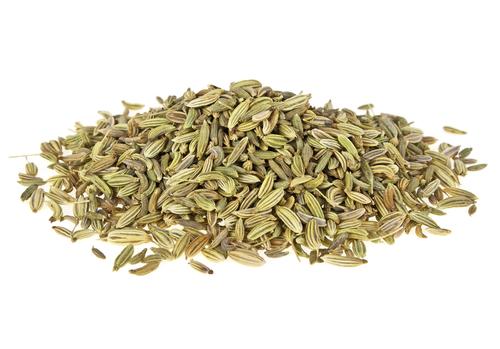 Fennel Seed Whole - Foeniculum vulgare