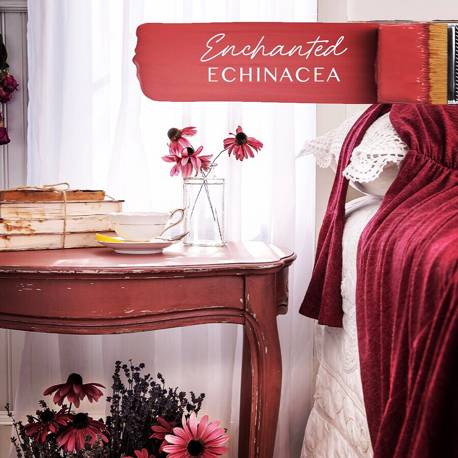 Lisa Marie Holmes Signature Collection: Enchanted Echinacea