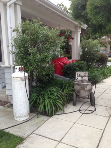 Heat Plants Safe 3.14.17.jpg
