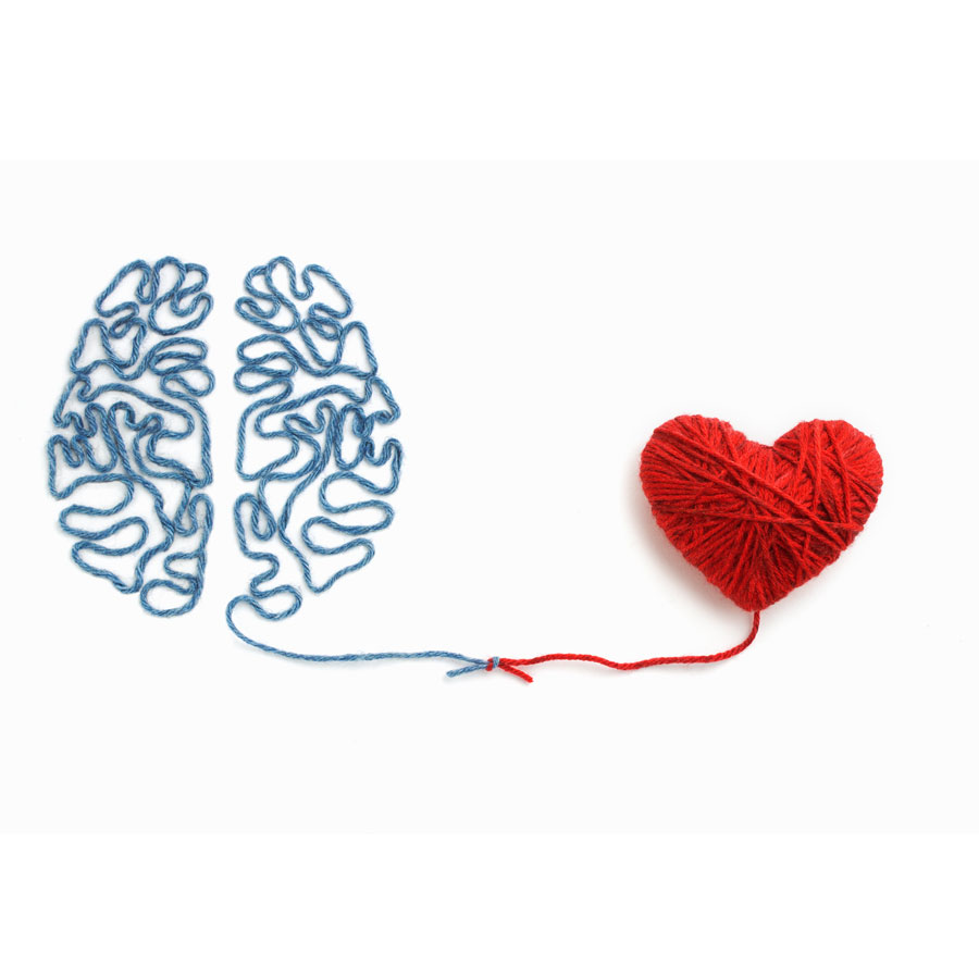 Heart brain connection