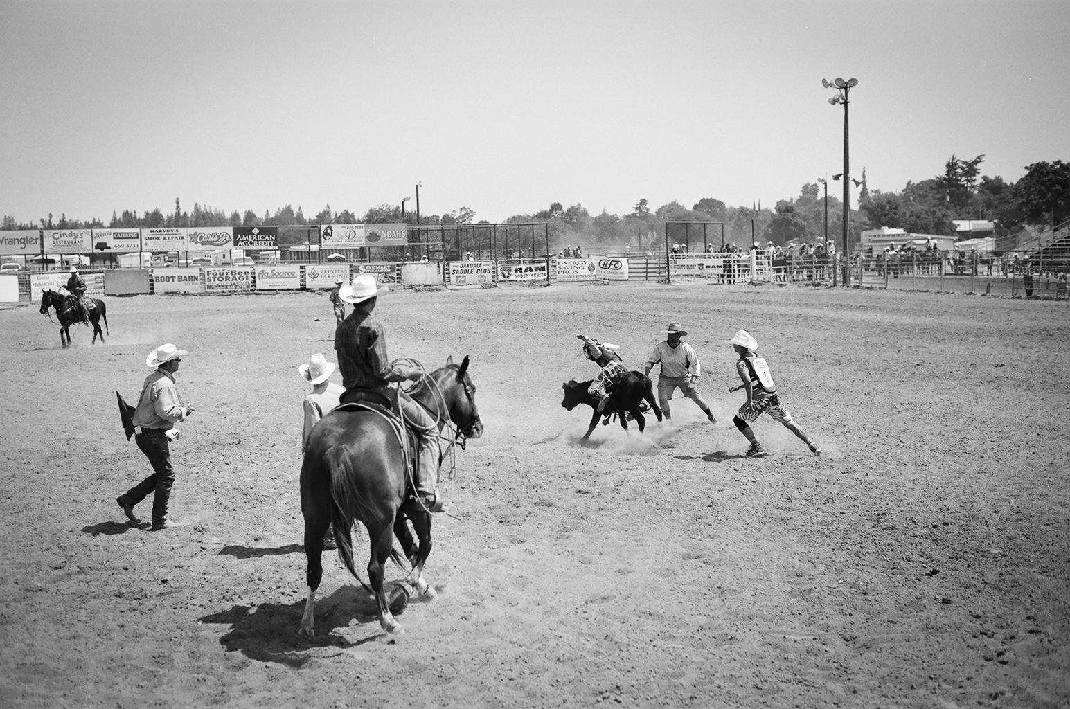 rodeo8.jpg