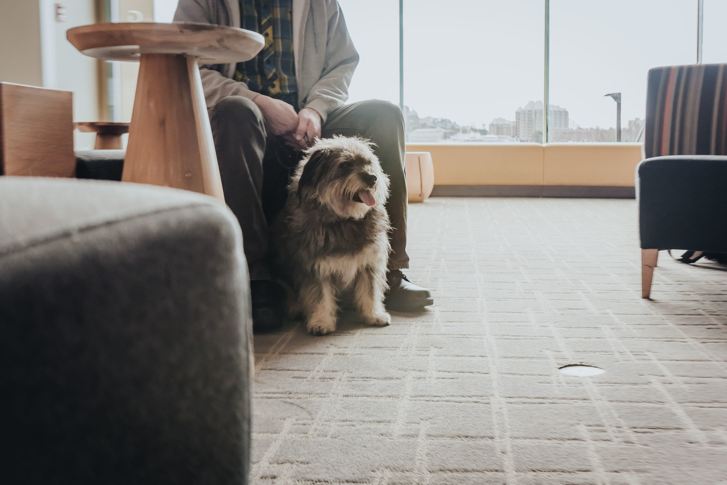 Pops and I are back in the lobby. We like people watching (and I like treats)