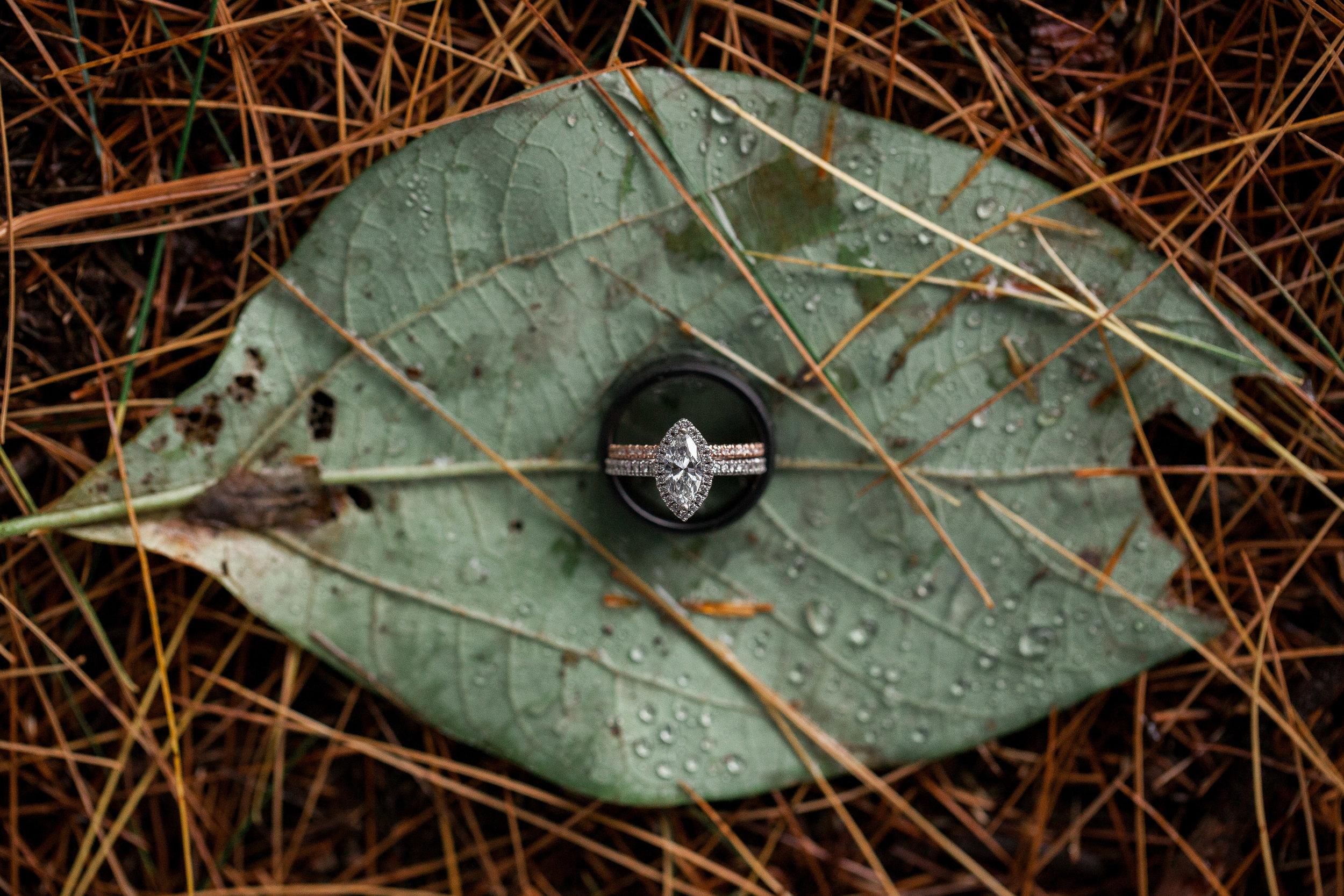 pittsburgh_wedding_photographer_liz_capuano-0901-2.jpg