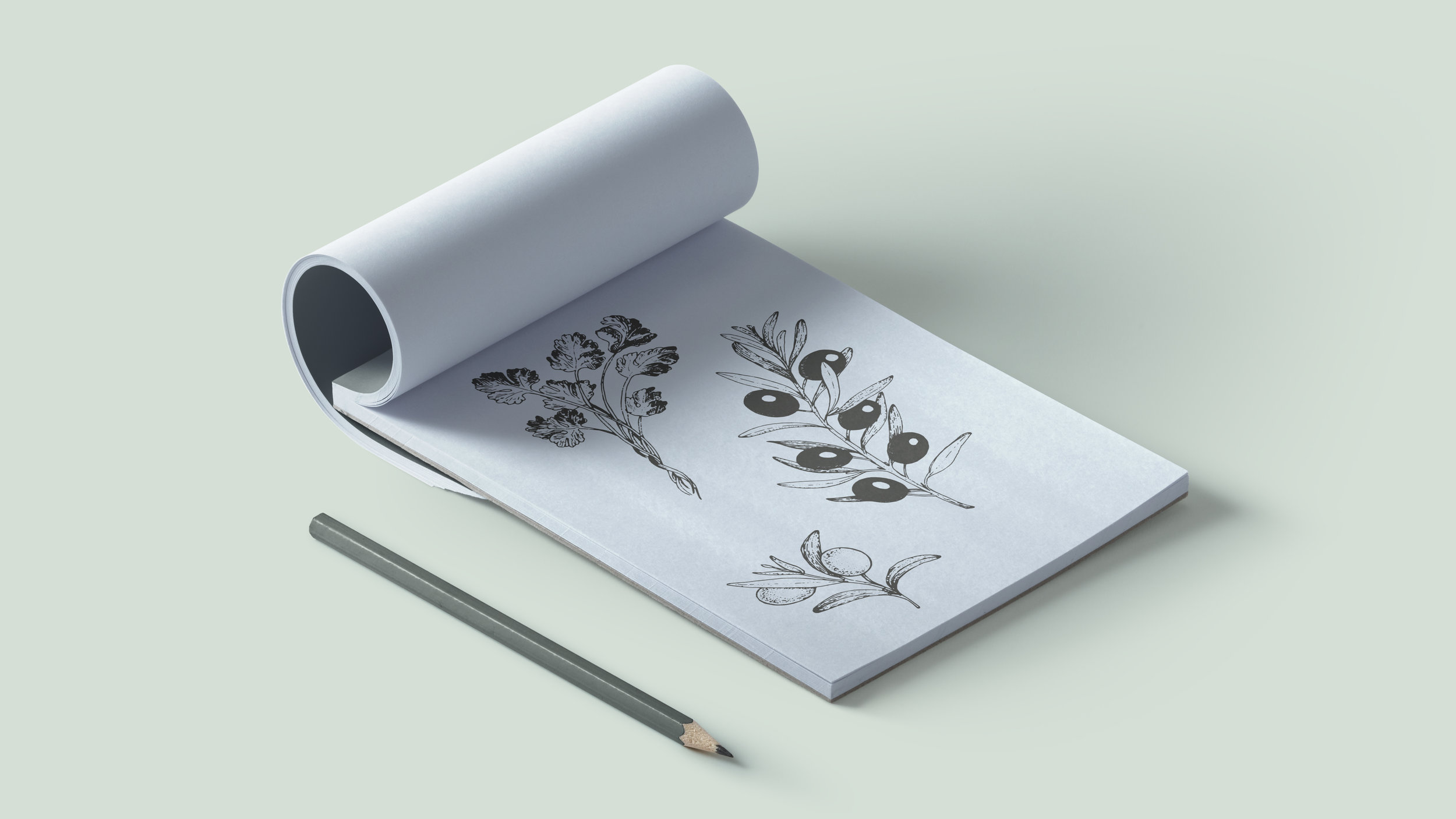 Splendido_IllustrationsMock.jpg