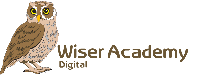 Wiser-Academy_Digital wide trans SML.png