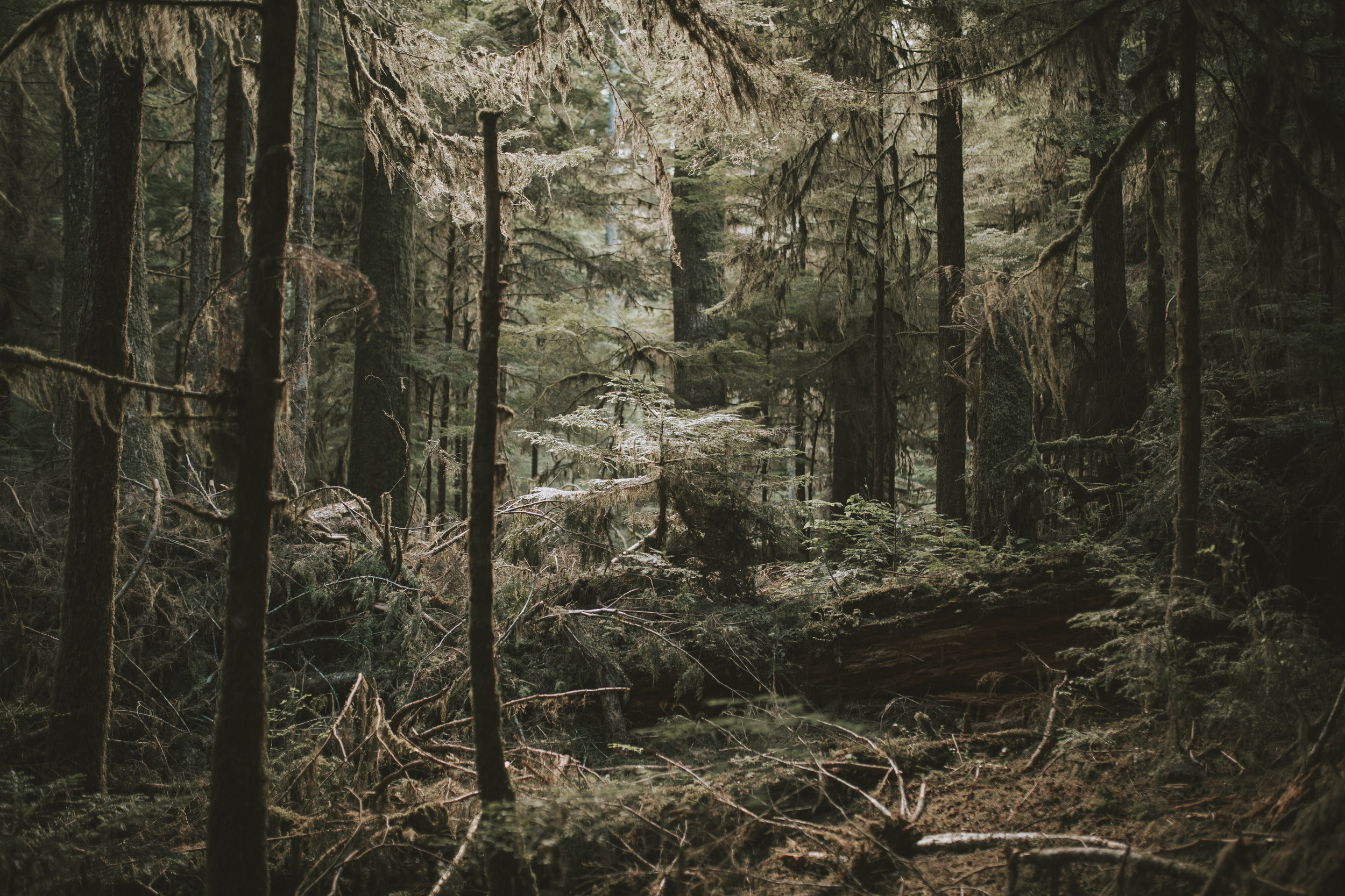 patagonia-2019-emilybeekscreative-167.jpg