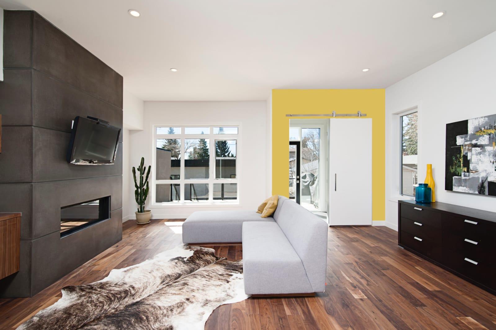 Can's living room photo option 2.jpg