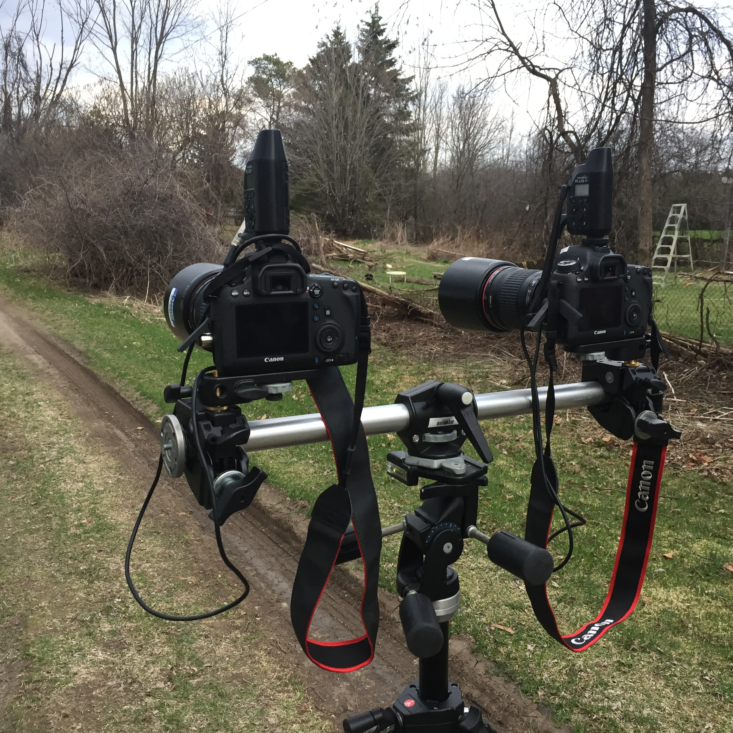 Fig. 1. Stereoscopic Rig #01 (Source: Machinski, 2018).