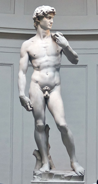 Figure 1: Michelangelo's David (Source: Academia.org)