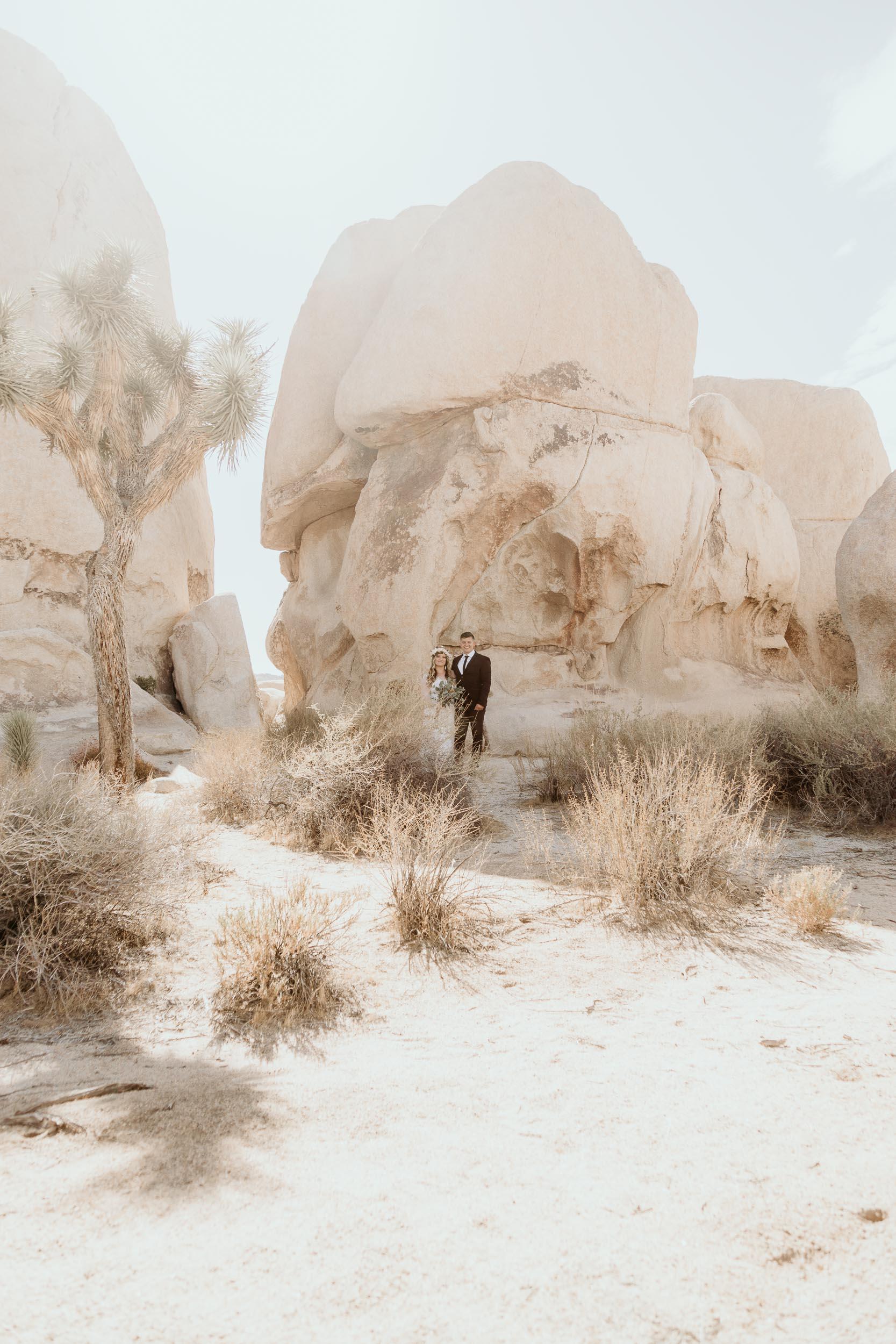 intimate-wedding-elopement-photographer-ottawa-joshua-tree-0008.jpg