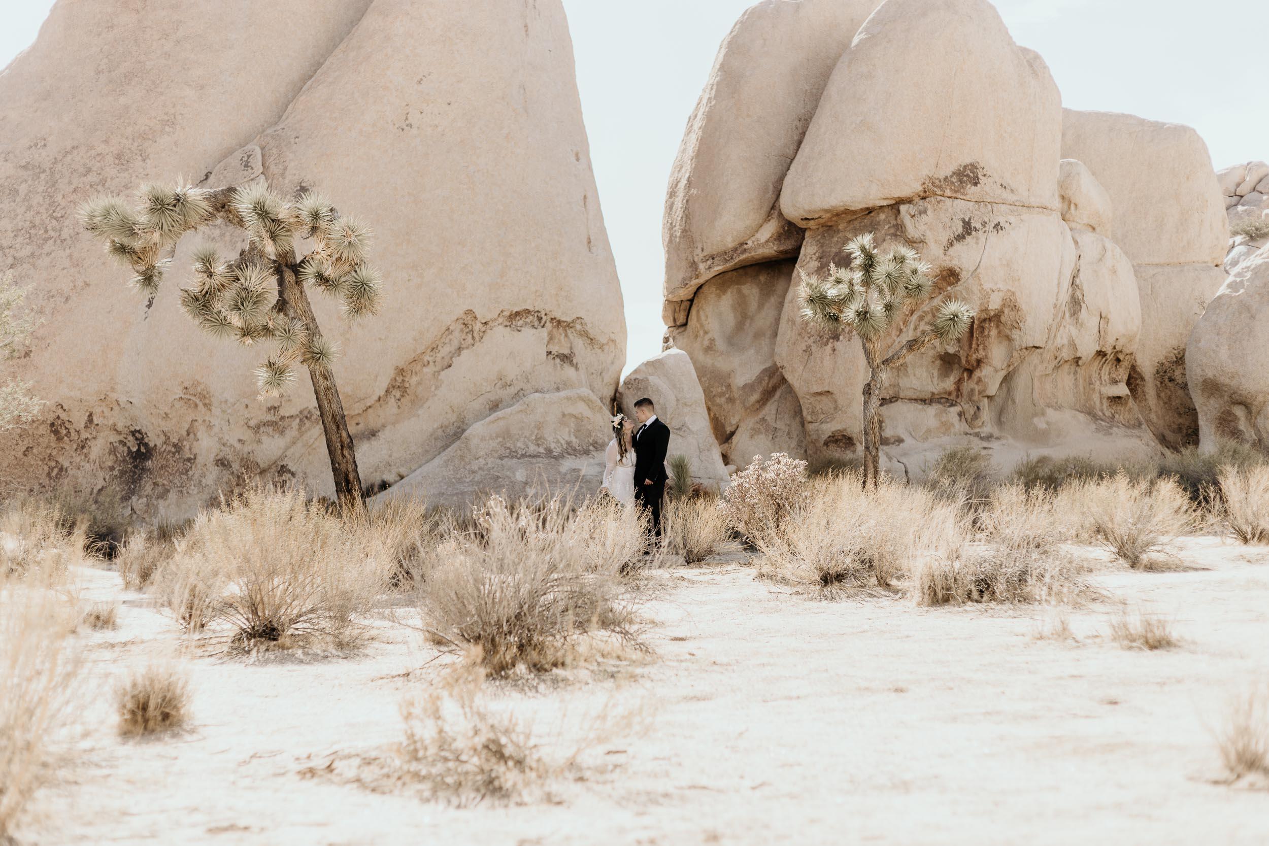 intimate-wedding-elopement-photographer-ottawa-joshua-tree-0150.jpg