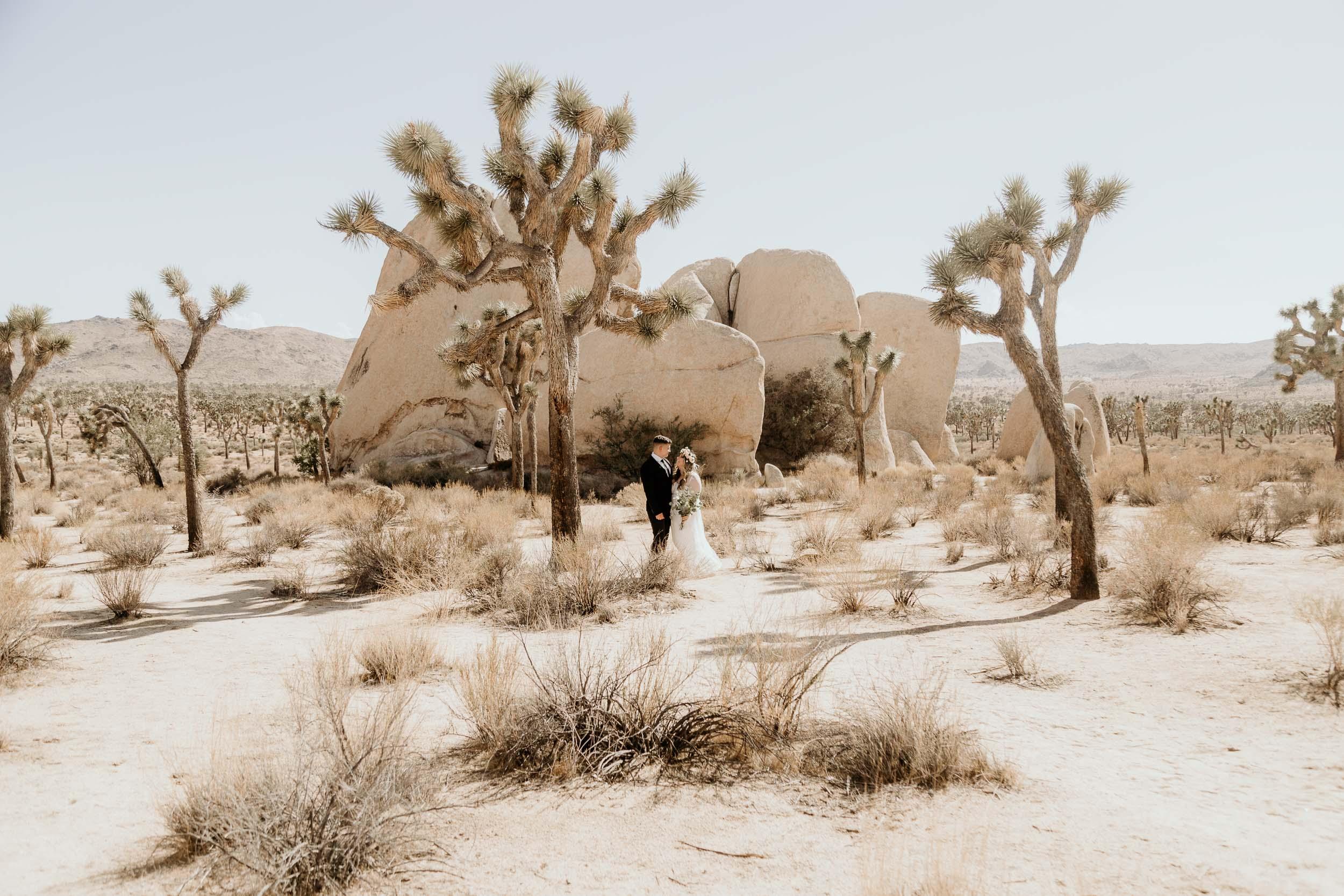 intimate-wedding-elopement-photographer-ottawa-joshua-tree-9971.jpg