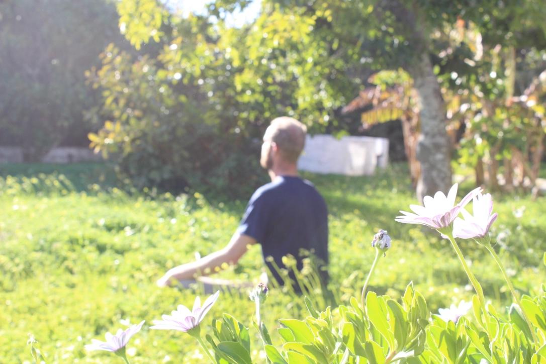 Yoga Villa Meditation Garden.jpg
