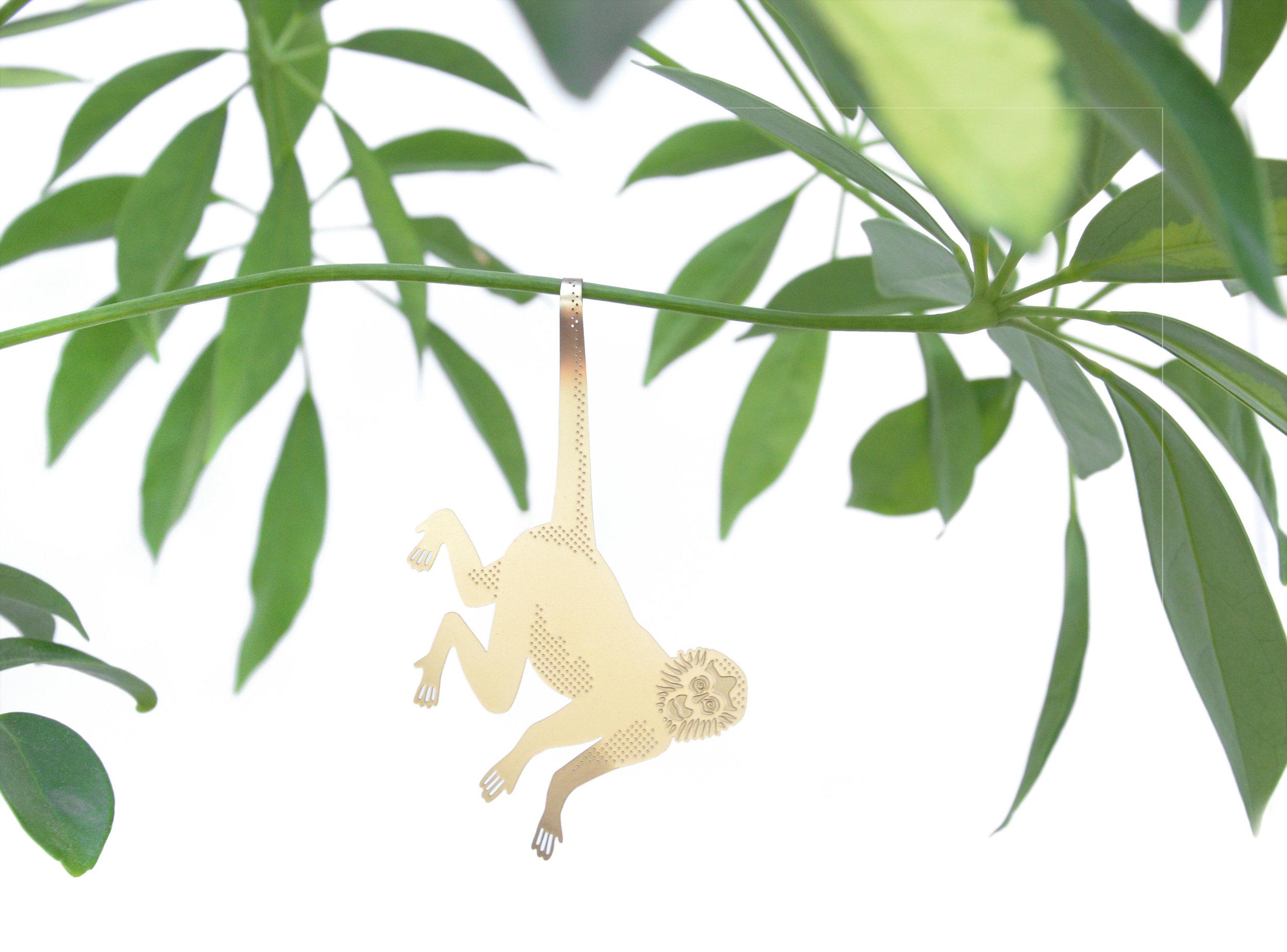 PA-7-Spider Monkey.jpg