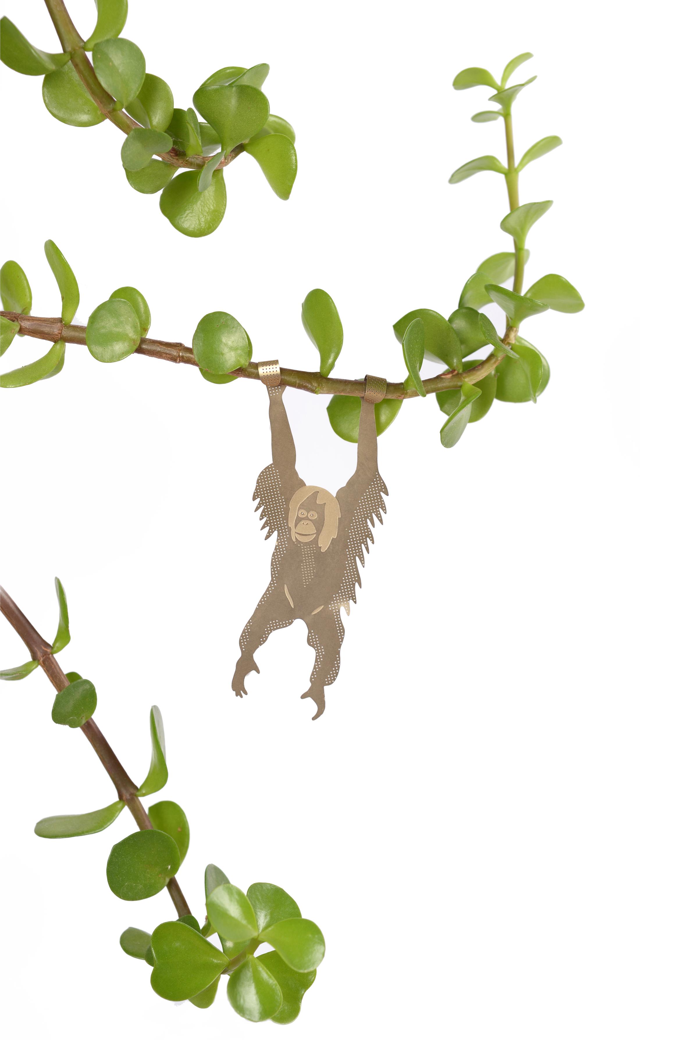 orangutan-white-green-plants-.jpg