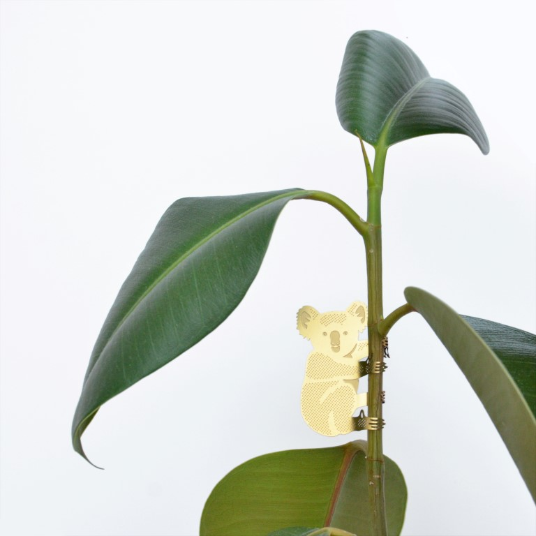 Koala-plant-animal - kopie.jpg