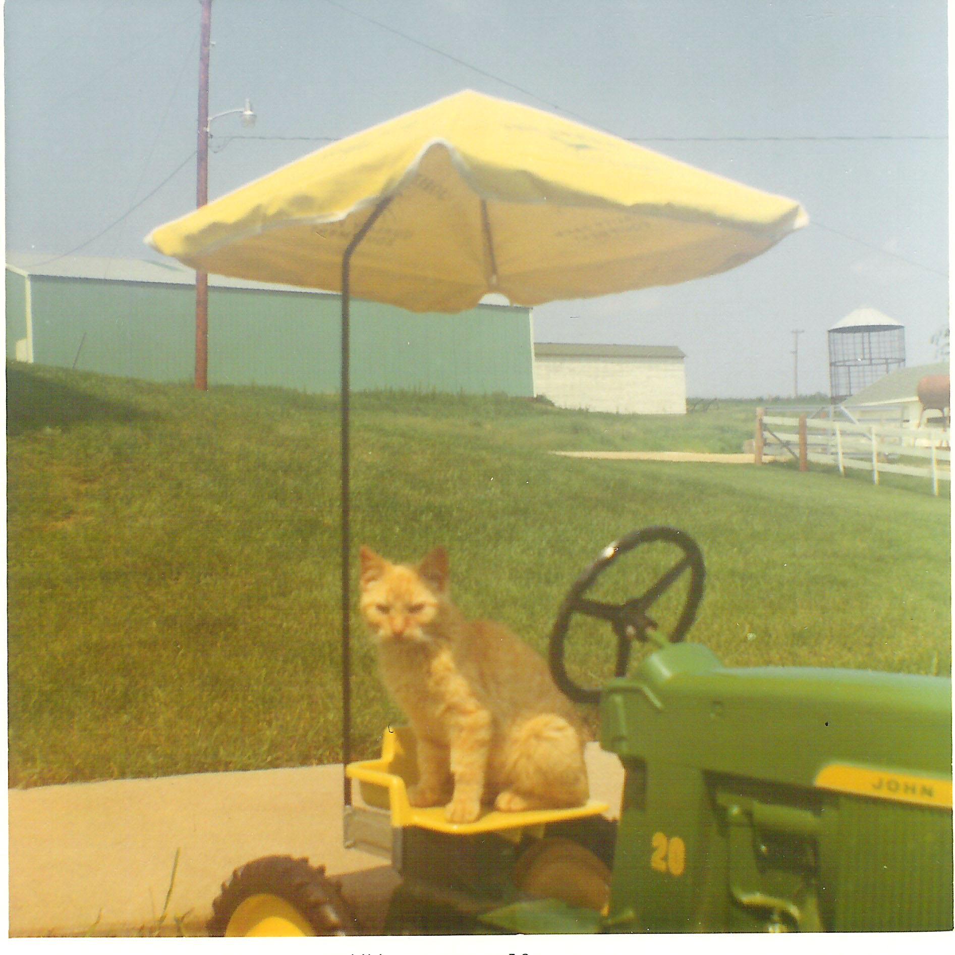 A rare shot of the pedal tractor with its umbrella attached. That didn't last long.