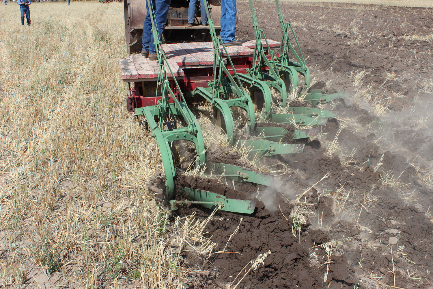The John Deere plow is doing well in the dry Montana soil. This grain stubble is not as difficult to plow as the original Prairie sod, which was tramped by the mighty bison herds.  Photo Luke Steinberger