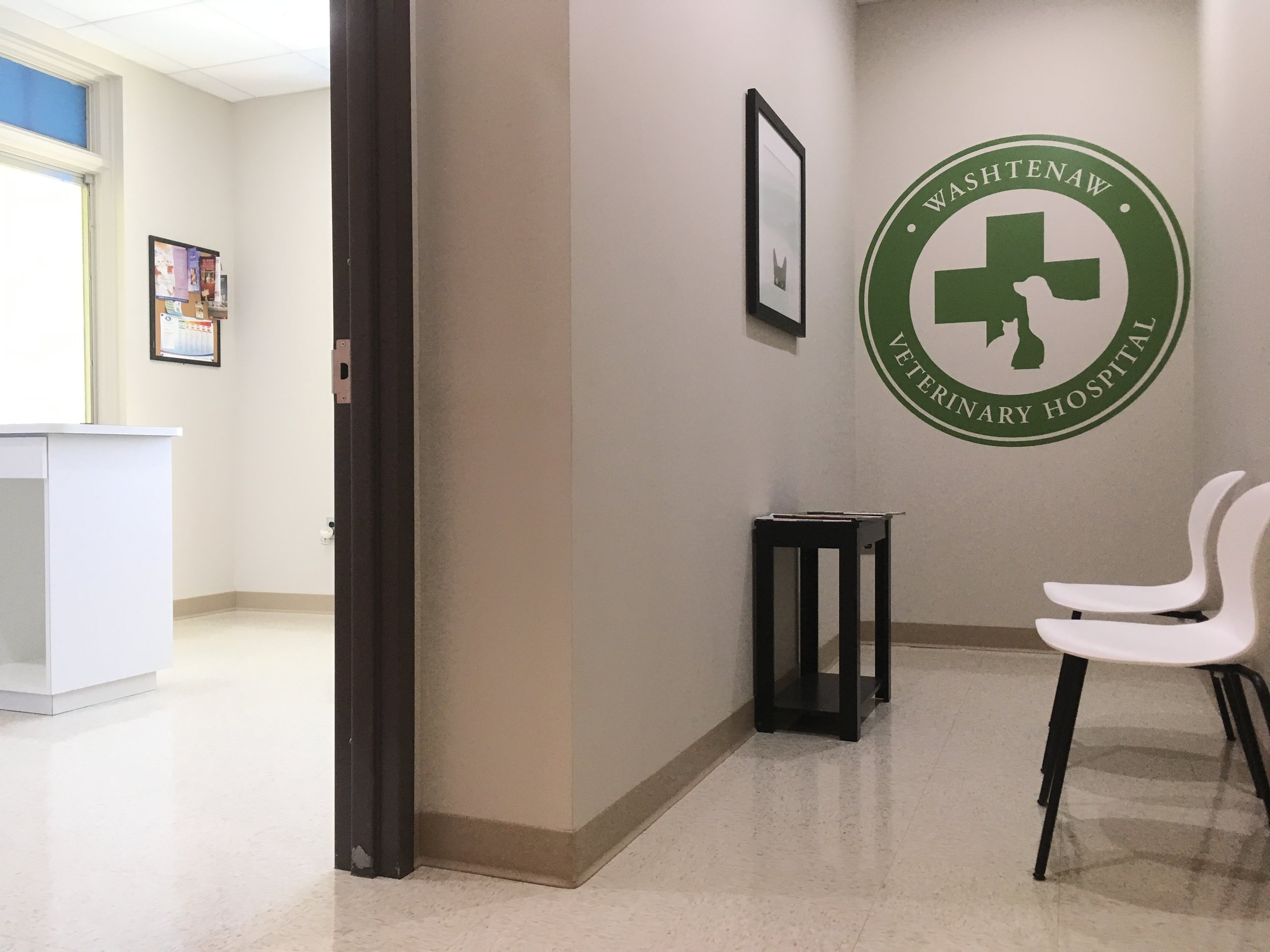 Feline waiting area and exam room entrance.