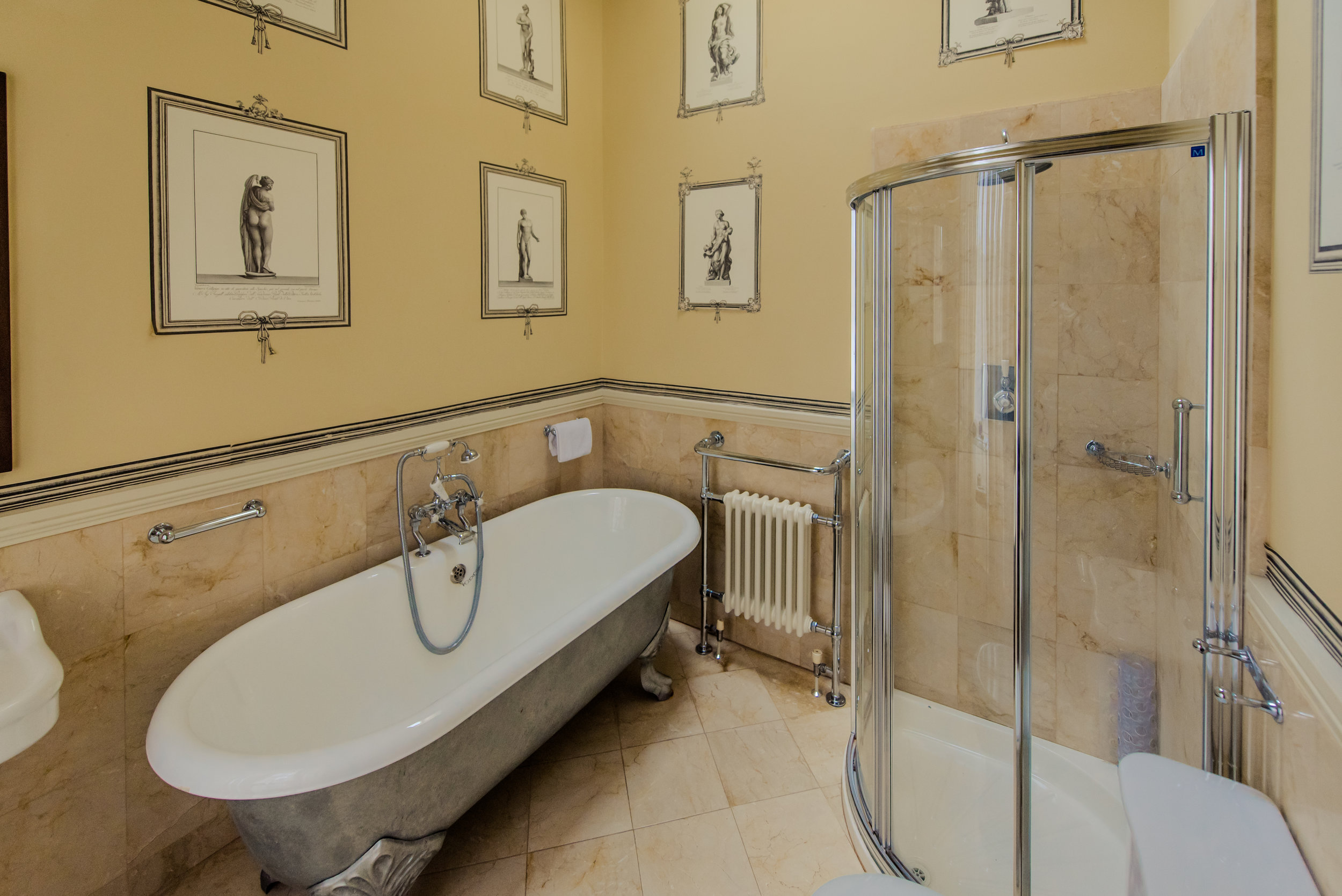Tulfarris Hotel & Golf Resort Manor House bathroom with beautiful wallpaper and glass shower.jpg