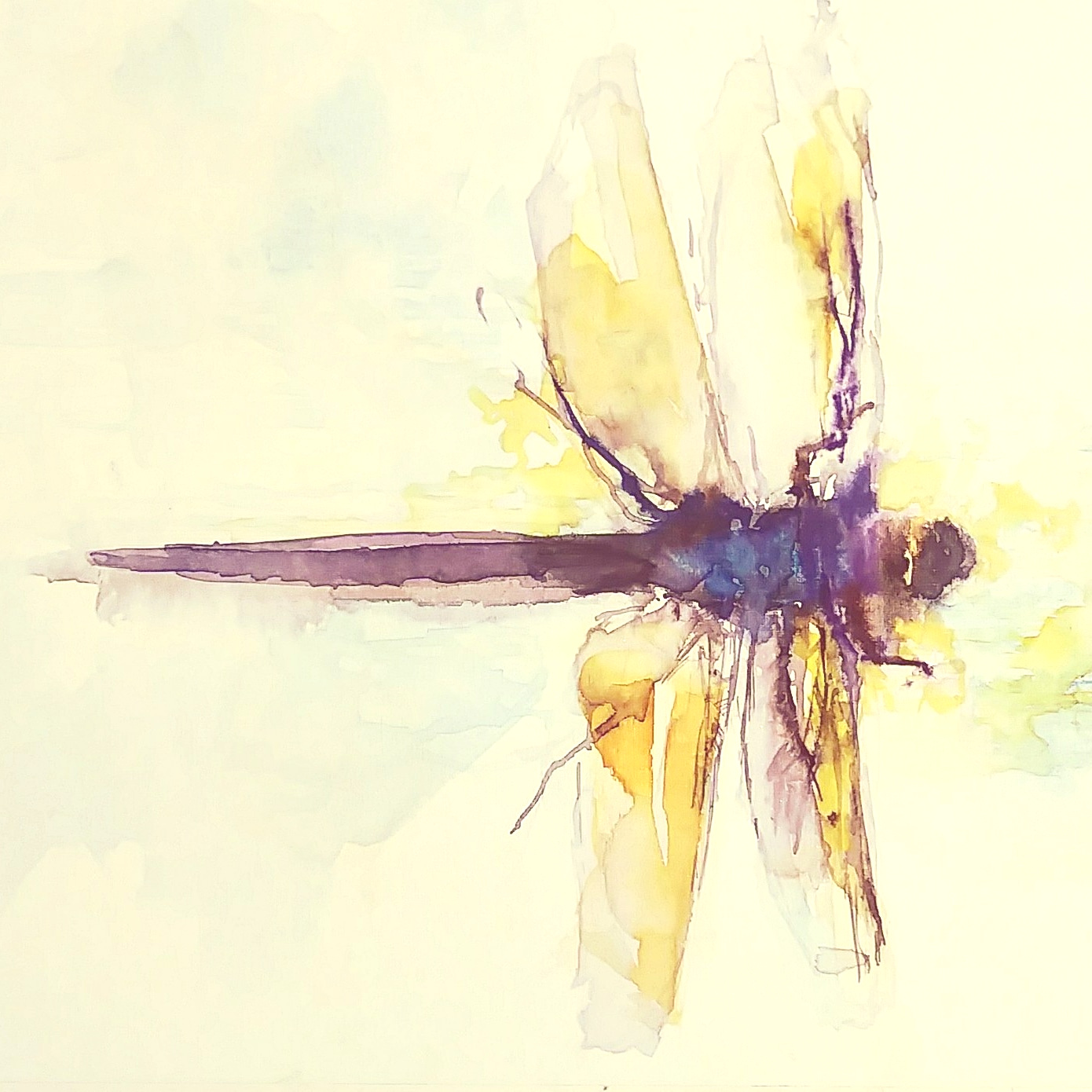 golddragonfly.jpg