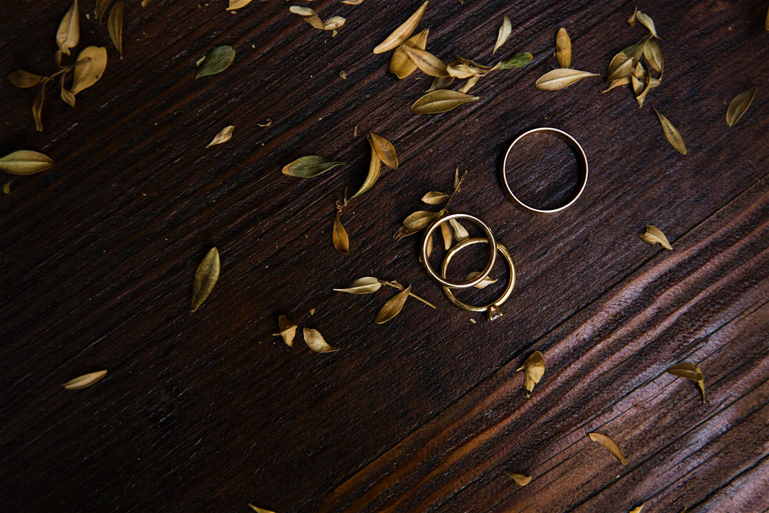 engagement ring and wedding band leaves summer wedding photographer new york city