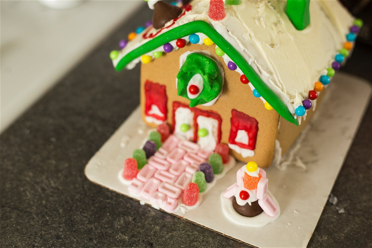 gingerbread house family photographer documentary