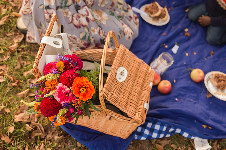 picnic basket in prospect park new york city