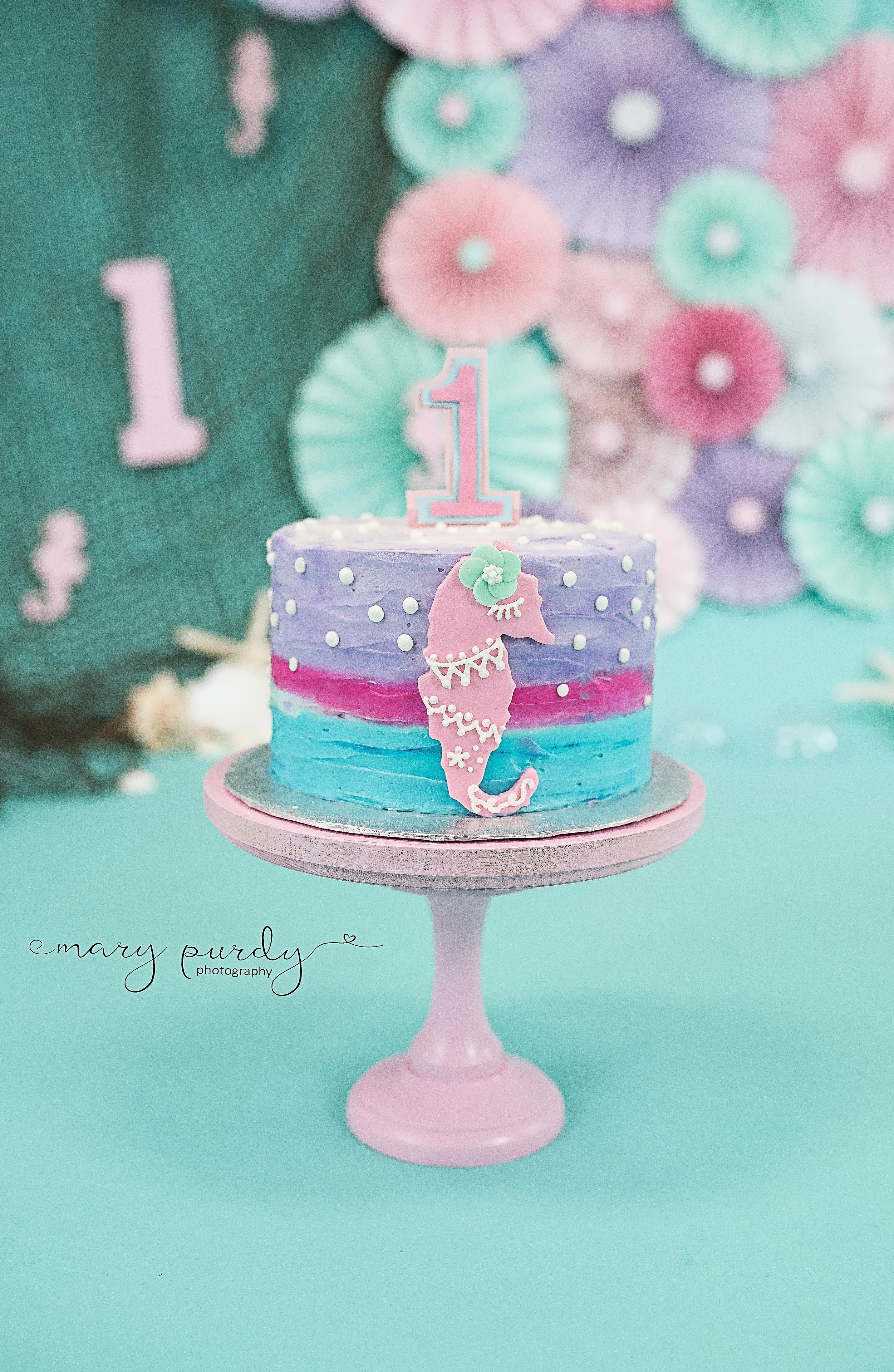 Seahorse Cake Smash 3 Mary Purdy
