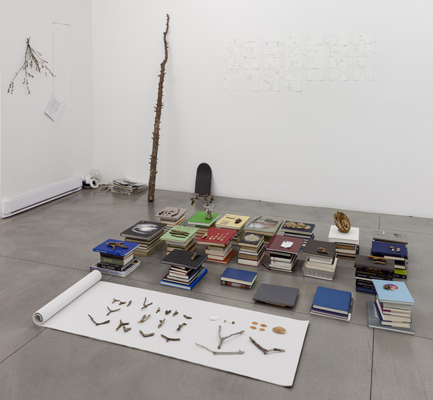 Katie Holten went for a walk every day of the exhibition and left a record in the gallery.