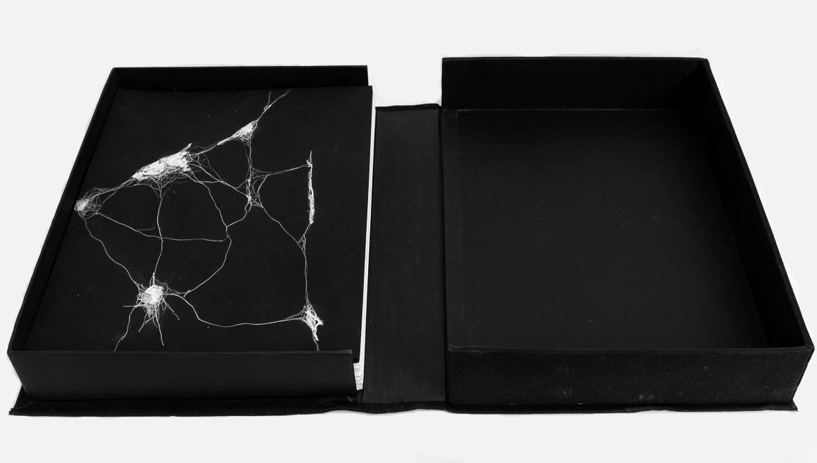 100 Drawings in a Box , 2014.