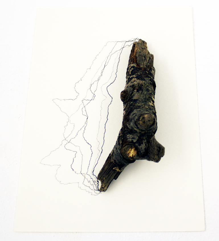 Shadow Lines , 2012, found twig, pencil and ink on paper.